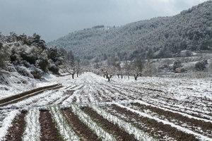 campo de siembra nevado