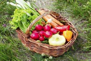 cesta de hortalizas